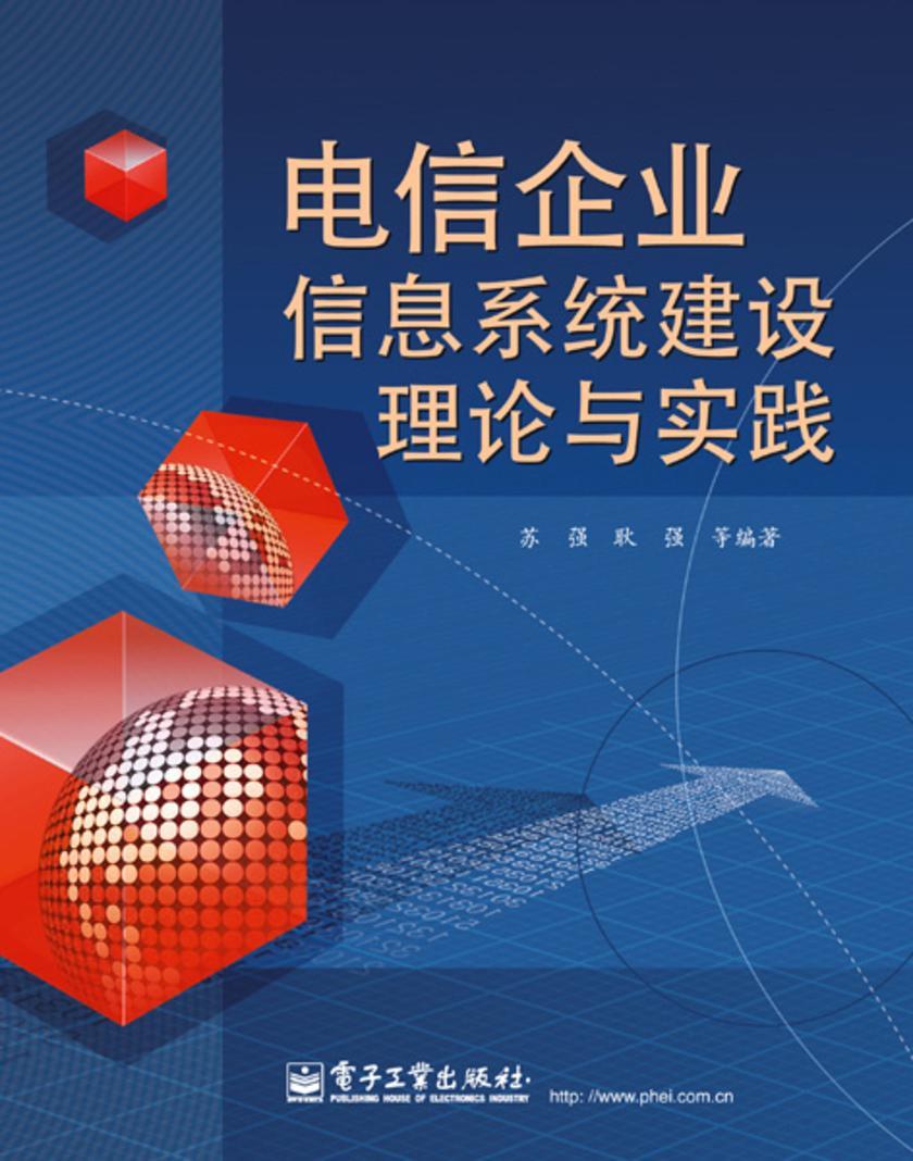 电信企业信息系统建设理论与实践