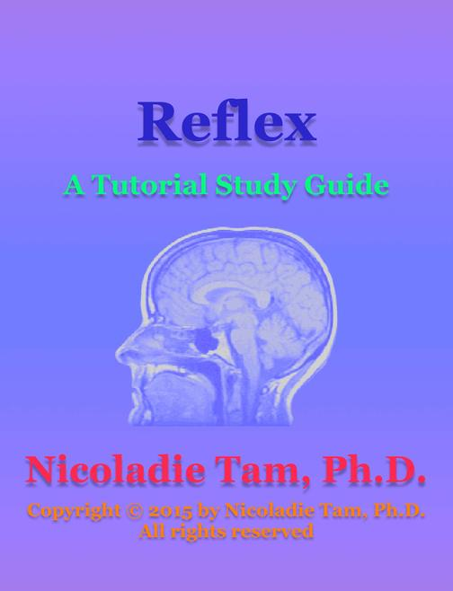 Reflex: A Tutorial Study Guide