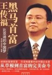 黑马首富王传福——比亚迪的中国梦(试读本)