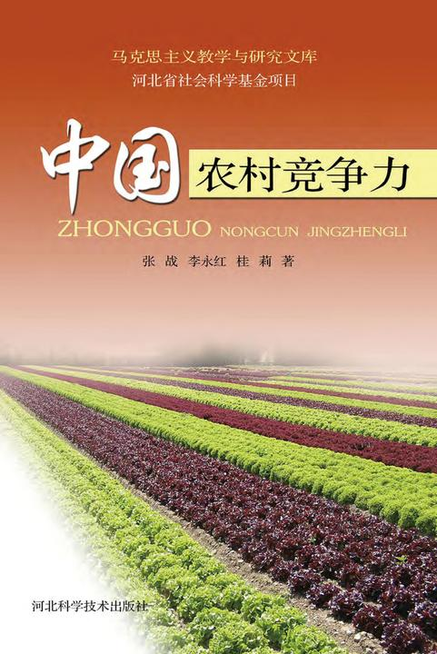 中国农村竞争力
