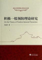 积极一般预防理论研究
