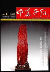 中华奇石 月刊 2011年11期(电子杂志)(仅适用PC阅读)