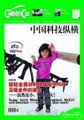 中国科技纵横 月刊 2011年19期(电子杂志)(仅适用PC阅读)