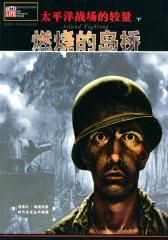 太平洋战场的较量(下):燃烧的岛桥(仅适用PC阅读)