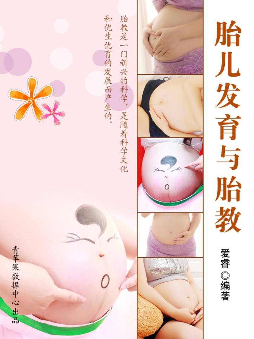 胎儿发育与胎教