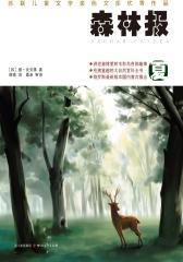 森林报——夏