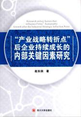 """""""产业战略转折点""""后企业持续成长的内部关键因素研究"""