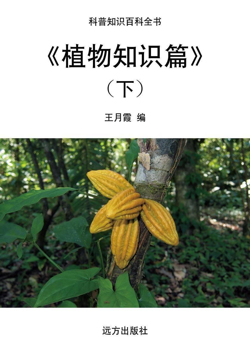 植物知识篇(下)