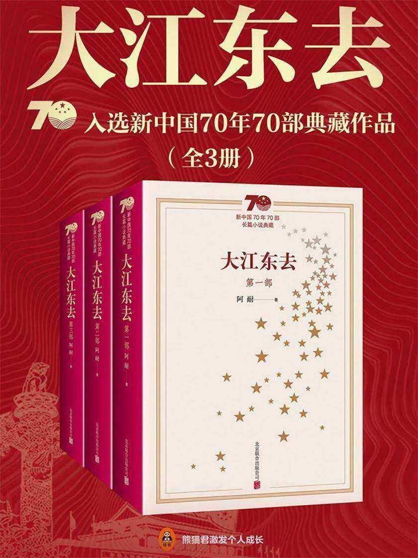 大江东去(套装共3册)《欢乐颂》作者阿耐经典代表作