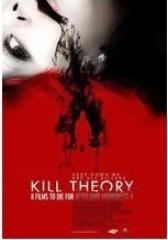 杀人理论(影视)