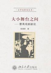 大小舞台之间:曹禺戏剧新论