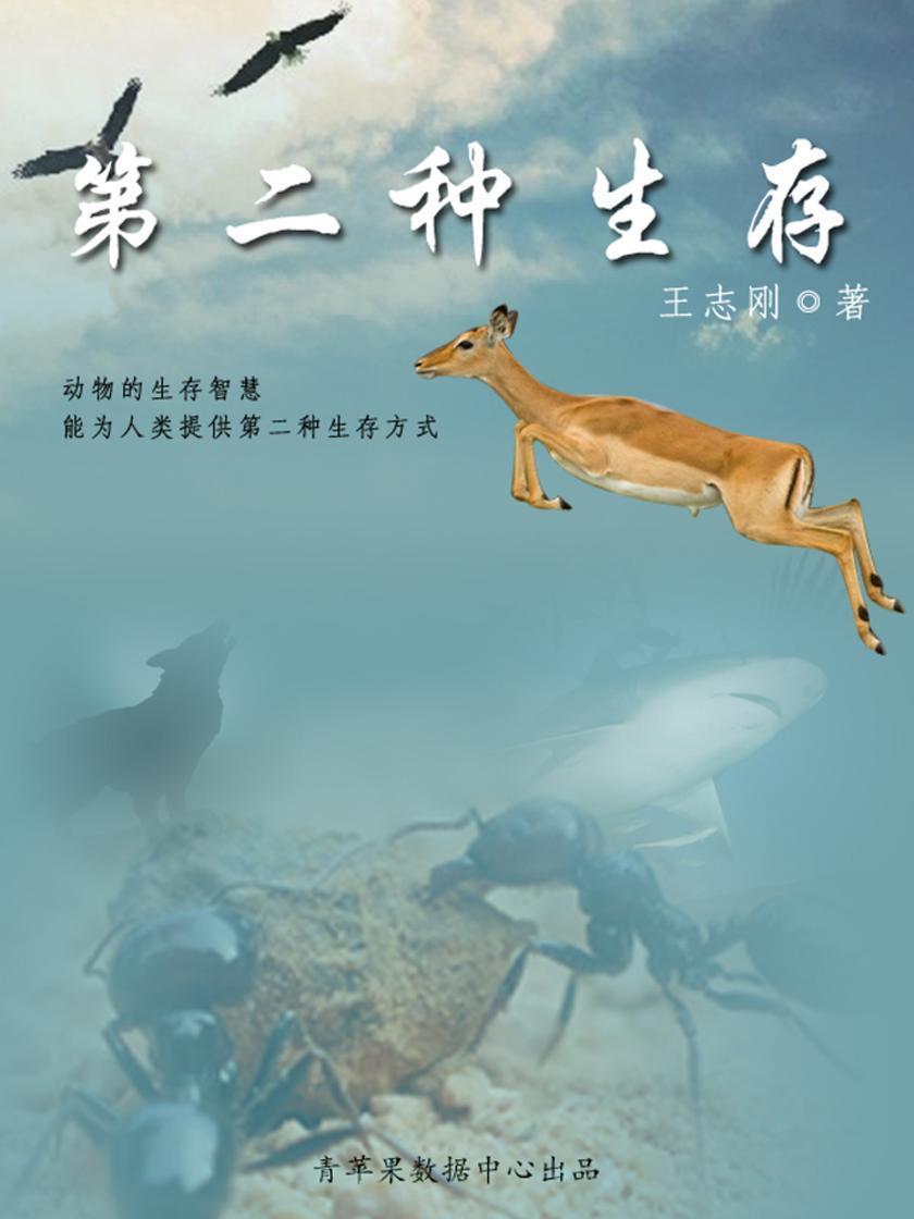 第二种生存:学习动物的生存智慧