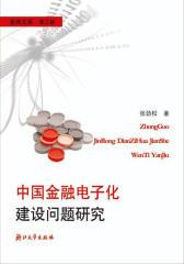 中国金融电子化建设问题研究