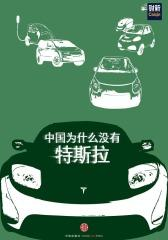 中国为什么没有特斯拉