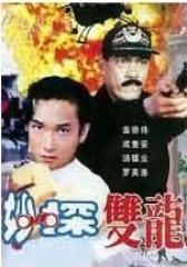 妙探双龙(影视)