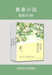 青春小说(套装共3册)