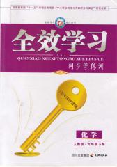 全效学习系列丛书:化学·人教版·九年级下册(仅适用PC阅读)