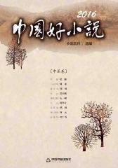 2016中国好小说(中篇卷)