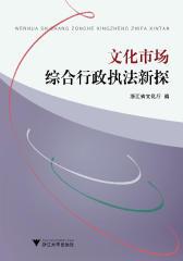 文化市场综合行政执法新探