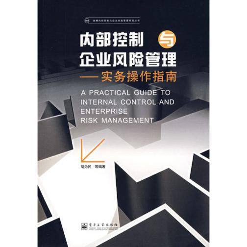 内部控制与企业风险管理:实务操作指南(仅适用PC阅读)