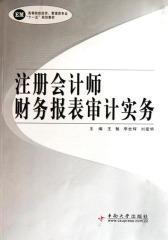 注册会计师财务报表审计实务(仅适用PC阅读)