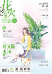花火B-2017-01期(电子杂志)