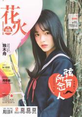 花火影像A-2017-03期(电子杂志)