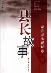 县长故事:新官员小说精选