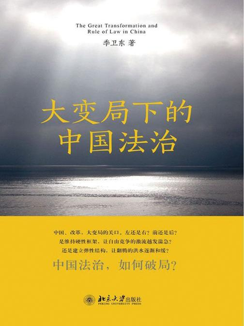 大变局下的中国法治