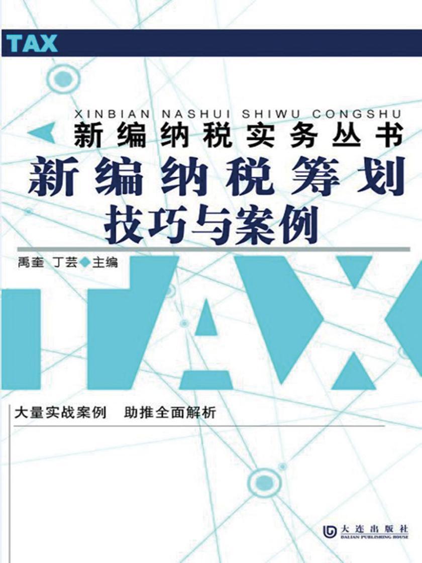 新编纳税筹划技巧与案例(新编纳税实务丛书)