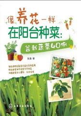 像养花一样在阳台种菜-盆栽蔬菜40例(试读本)