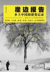 崖边报告:乡土中国的裂变记录(沙发图书馆)