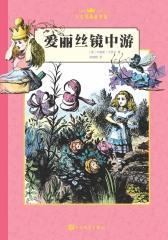 爱丽丝镜中游(中文版)