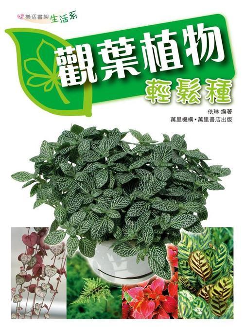 觀葉植物輕鬆栽
