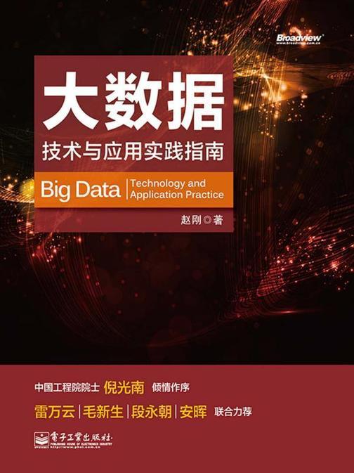 大数据:技术与应用实践指南