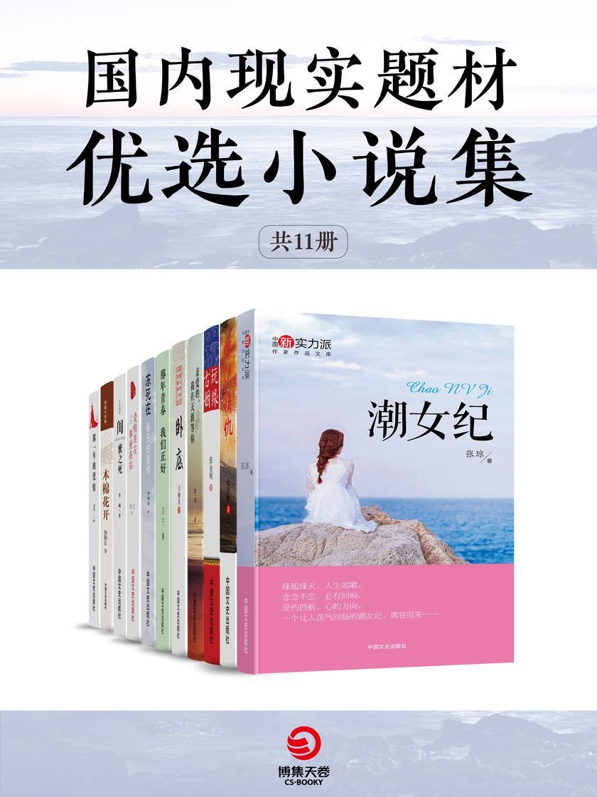 国内现实题材优选小说集(共11册)
