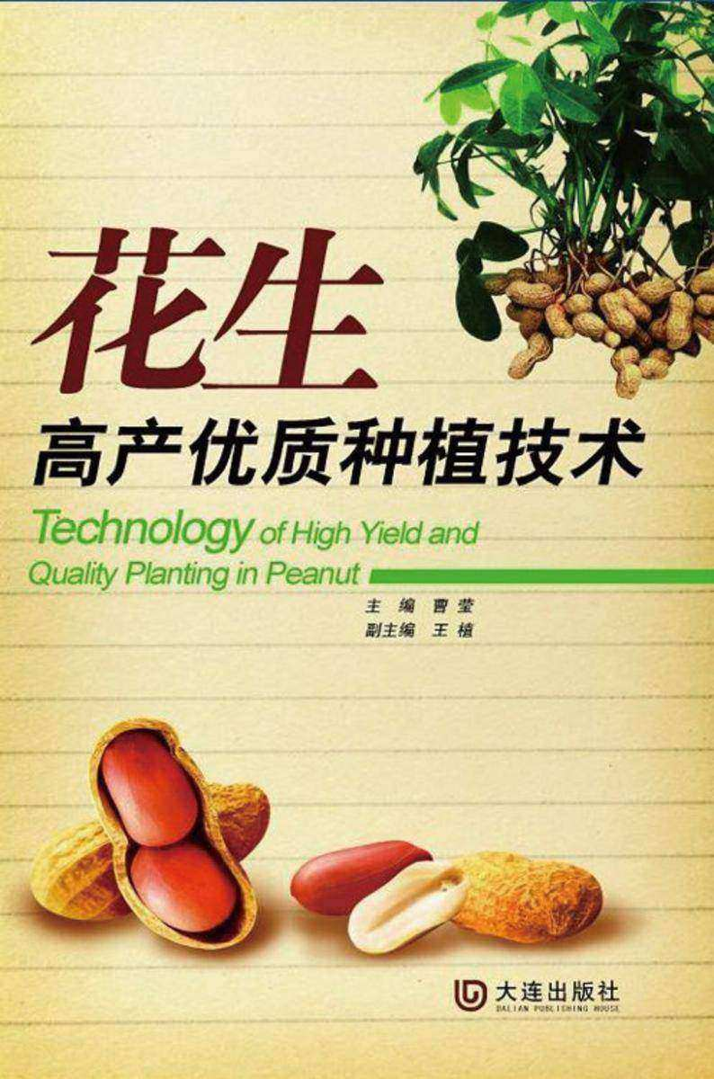 花生高产优质种植技术