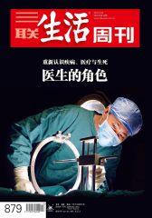三联生活周刊·医生的角色(2016年13期)(电子杂志)
