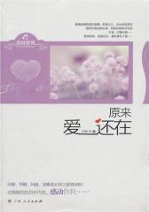 《原来爱还在》(闪婚、毕婚、闪离、复婚者必读之温情读物!在婚姻危机的年代里,感动你我……)(试读本)