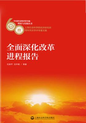 全面深化改革进程报告