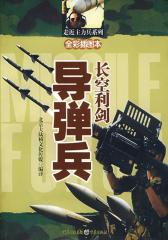 长空利剑——导弹兵