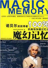 魔幻记忆100%