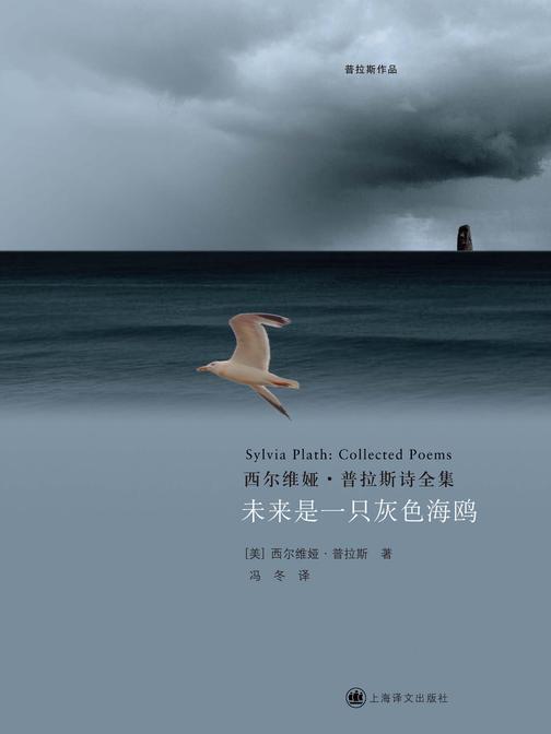 未来是一只灰色海鸥:西尔维娅·普拉斯诗全集