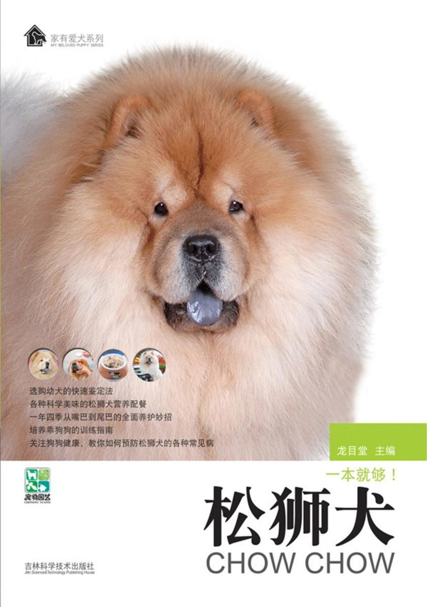 松狮犬(仅适用PC阅读)