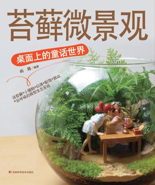 苔藓微景观——桌面上的童话世界
