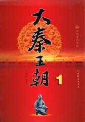 大秦王朝1