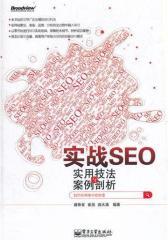 实战SEO——实用技法与案例剖析(试读本)