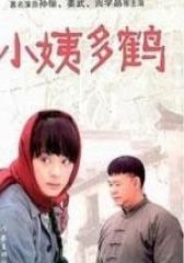 小姨多鹤(影视)