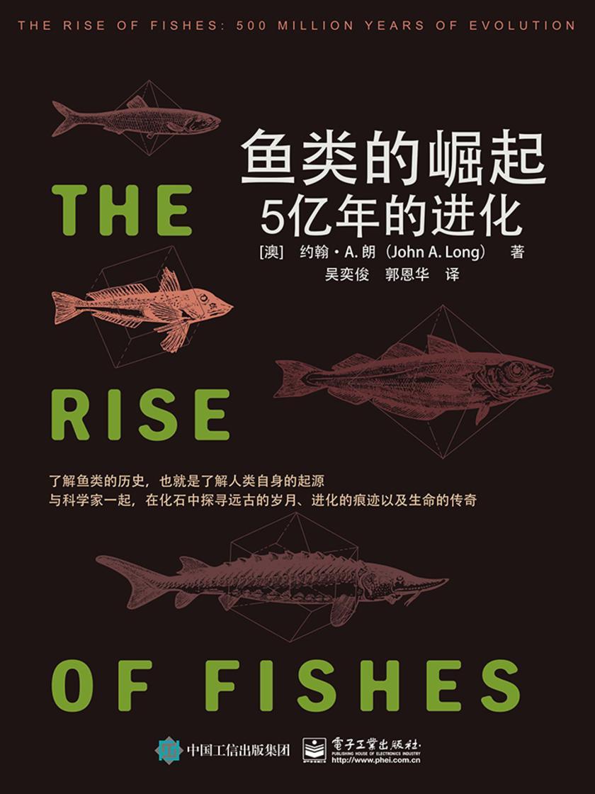 鱼类的崛起:5亿年的进化