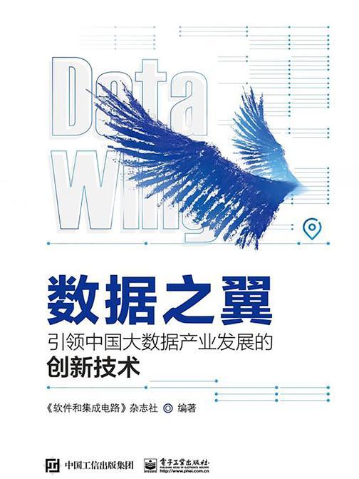 数据之翼:引领中国大数据产业发展的创新技术